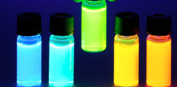 Fluorescence Image For Fb And Li