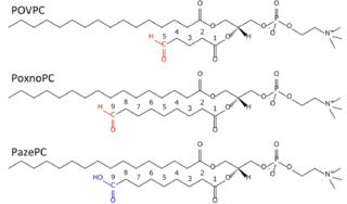 Oxidized Lipids