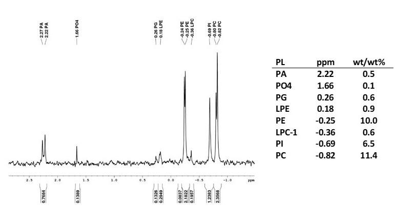 NMR-Blog-Photo.jpg#asset:68976