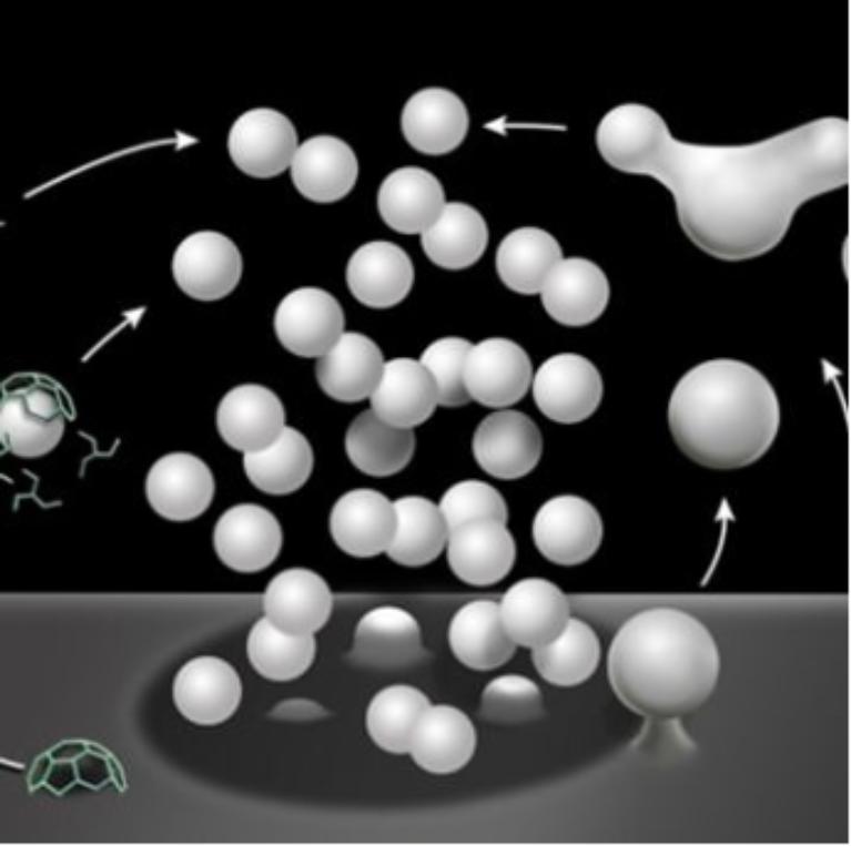 Membrane Fusion Subgroup