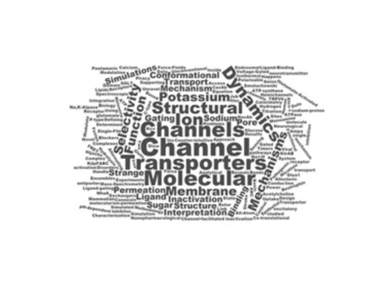 Membrane Transport Subgroup