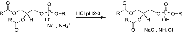 Protonation of Acidic Lipids