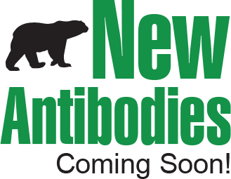New Antibodies Coming Soon!